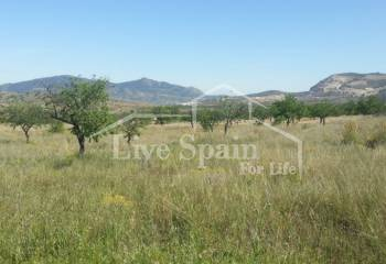 Plot of Land - Resale - Hondon De Las Nieves - Hondon De Las Nieves